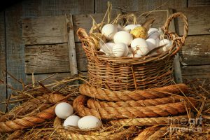 mand met eieren