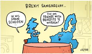 Brexit. Welke Brexit?